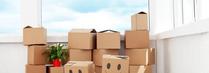 Thùng carton, công cụ không thể thiếu của mỗi chuyến chuyển nhà