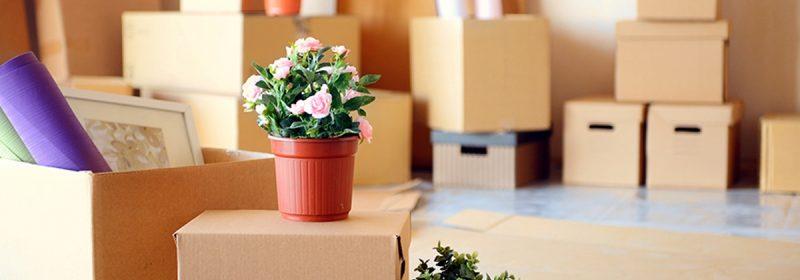5 lưu ý cần ghi nhớ khi chuyển nhà để tiết kiệm chi phí